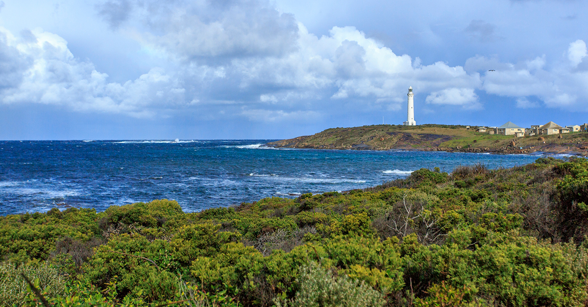 Discover The Insider Secrets About Margaret River